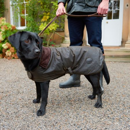 barbour dog jacket